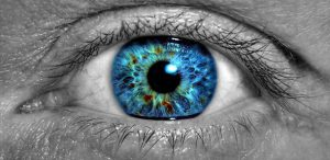 Cells from the Eye Are Inkjet-Printed