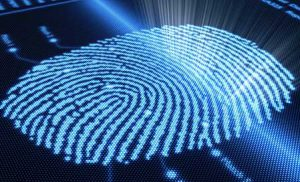 Digital fingerprint anology of how the cornea optical fingerprint is unique