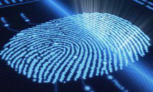 Digital fingerprint anology of how the cornea optical fingerprint is unique