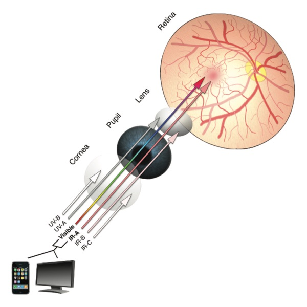 Visable Wavelength Retina Risk